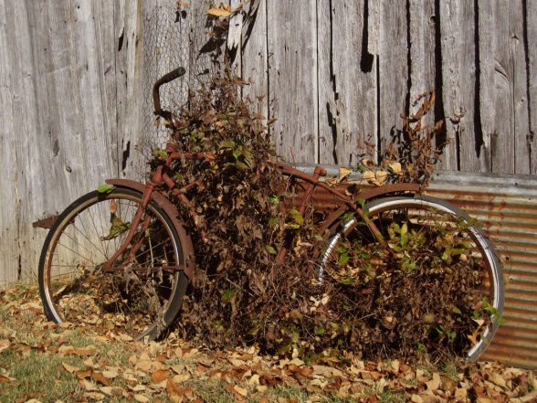 barn-rusty-bike-2